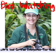 Hilda Morales - Puerto RIco Certified Tour Guide - Birder Guide